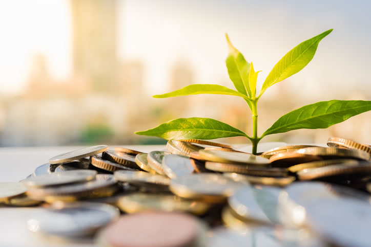 A Short Guide to Environmental Investing